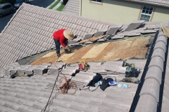Trustworthy roofing company West Palm Beach Florida