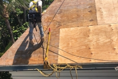 New plywood being applied to roof