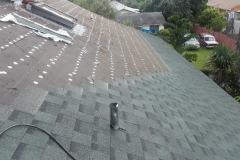 3 Dimensional Asphalt Shingle Roofing