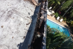 Water damaged flat roof